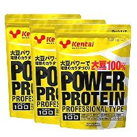 パワープロテイン プロフェッショナルタイプ 1.2kg x 3袋(徳用) 【送料無料/Kentai(ケンタイ)/健康体力研究所】