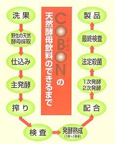コーボンマーベル 525ml 【送料無料/天然酵母飲料/第一酵母】