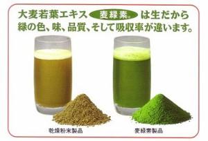 グリーンマグマ(麦緑素) 170g 【国産大麦若葉青汁】