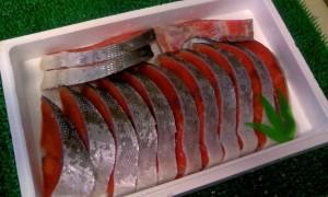 送料無料大臣賞受賞♪'中辛'紅鮭フィレ約1kg/SALE/ギフト/贈答/業務用/グルメ/BBQ/お歳暮/お得/