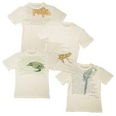 オーガニック コットンTシャツ Prime Clothing