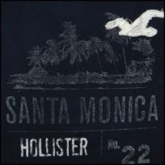 ホリスターカリフォルニア ストーンステップスビーチ ネイビー (HOLLISTER CALIFORNIA STONE STEPS BEACH)