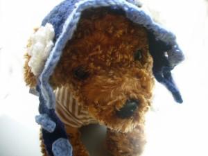 パンプキンハウス ニット帽 Sサイズ ブルー