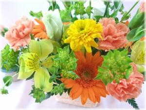 7月の誕生夏の花★オレンジアレンジ3,500円【送料無料】ネット特価!