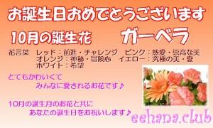10月の誕生花ガーベラ【アレンジ・花束】デザイナーにおまかせ★12,000円【送料無料】ネット特価!