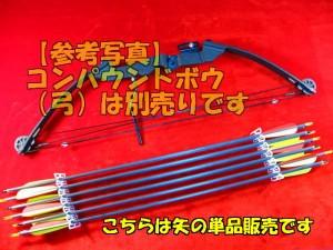 【遠州屋】 カーボン製 替矢  単品販売 コンパウンドボウに (R/市)☆
