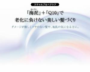 【パシフィックプロダクツ】アルグスーパーマッドヘアパック Q10/210g