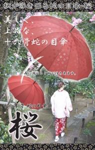 桜の紋様が浮き出る蛇の目傘「桜」