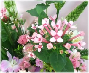 11月の誕生花★ロマンスアレンジ5,000円【送料無料】ネット特価!