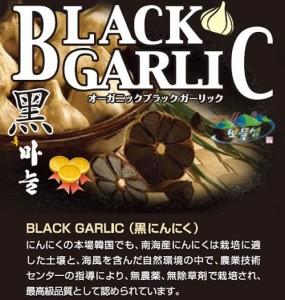 黒にんにく【ブラックガーリック】2球入り1箱