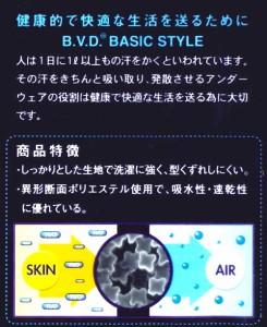 BVDボクサーブリーフ 2枚組 M〜LL