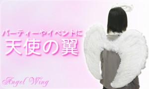送料無料!天使の羽(翼)・天使の輪セット★仮装、パーティ、イベント、文化祭、演劇、コスプレに♪