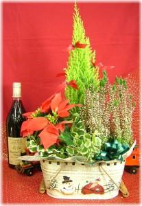 クリスマスのプレゼントに★X'masプランツ【サンタ】3,800円【税込】