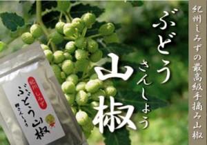【本物の香りをお届けします】紀州しみずぶどう山椒【送料無料】【メール便】