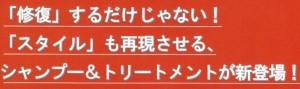 【ハリコシ+サラサラ】ナノアミノ トリートメントDR 1000g
