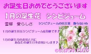 1月の誕生花おまかせフラワー15,000円【送料無料】ネット特価!
