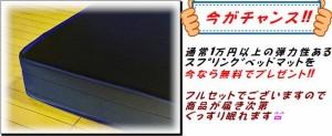 【嬉しい送料無料!】 ベッド セミダブル セミダブルベッド マットレス マットレス付き 国産 ベッドフレーム フロアベッド 送料無料 【19