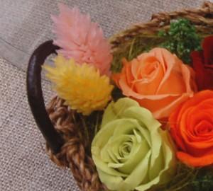 カラフルローズプチバスケット【赤・オレンジ・ピンクetc】花ギフト 母の日や誕生日 プリザーブドフラワー 女性へのプレゼントに