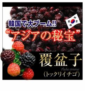 【トックリイチゴ石鹸】■2,500円(税別)以上で送料無料■