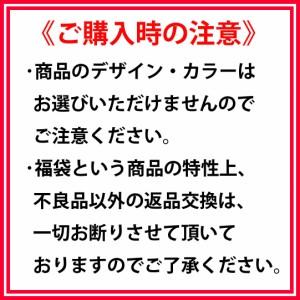 ☆★☆秋物トップス7点入り☆★☆サロン、ゆるカジ系☆AUTUMN BOX【感謝品】