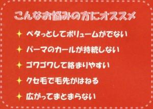 【ハリコシ+サラサラ】ナノアミノ シャンプーDR &トリートメント DR 1000mlペア 【送料無料】