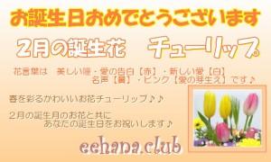 2月の誕生花チューリップ★デザイナーにおまかせフラワー7,000円【送料無料】【翌日配達】【商品画像確認OK!】