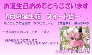1月誕生花★デザイナーにおまかせフラワー3,500円【送料無料】ネット特価!!