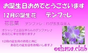 12月誕生花★おまかせフラワー3,500円【送料無料】ネット特価!