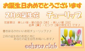 ポイント5倍★2月誕生花チューリップおまかせフラワー5,000円【送料無料】画像確認OK!