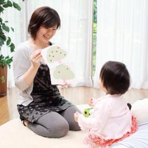【送料無料】 七田式(しちだ)教材 七田式ドッツセット(算数・計算力)