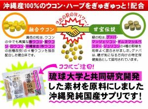 琉球酒豪伝説 5袋セット(計30包)(6包×5袋)沖縄県産ウコン【メール便指定で送料無料】