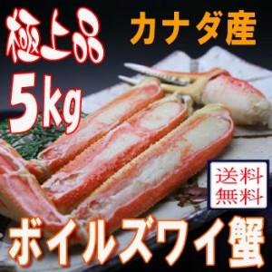 【送料無料】極上品質!カナダ産ボイルズワイ蟹 たっぷり5kg入 [訳ありお中元ギフト]ご家族で/パーティに/かに/カニ/贈答[いなべ冷凍-f]