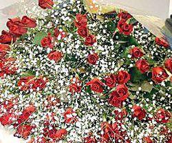 送料無料 赤いバラ 60本の花束 薔薇 ばら 誕生日 記念日 レッドローズ