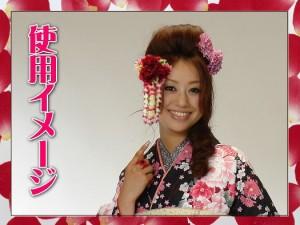 振袖成人式&袴に 舞妓風花珠ダラリ髪飾り(かんざし)薔薇赤