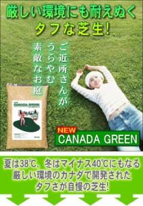送料無料【ニューカナダグリーン(NEWカナダグリーン)】芝 種、芝 肥料、芝生 種、芝 ガーデニング、芝生の種、芝 庭