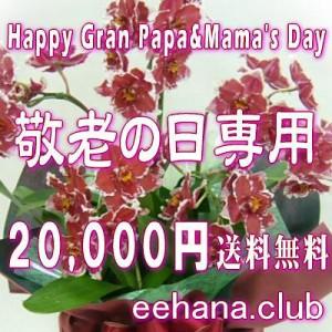 敬老の日ギフト★おまかせフラワー20,000円【送料無料】ネット特価!