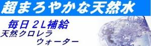 【5本】地域限定送料無料 元気の源