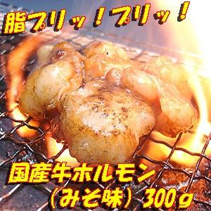 国産牛とろとろホルモン(みそ味) 300g【B級グルメ】焼肉・モツ鍋にどうぞ!