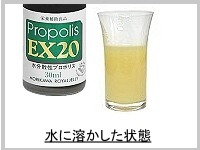 プロポリスEX20 100ml 【送料無料/森川ローヤルゼリー】