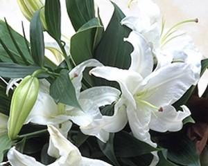 タイムセール★カサブランカの花束