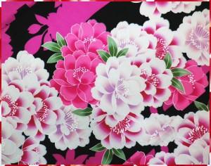 夏粋浴衣&花結び(作り)兵児帯2点セット黒地枝垂八重桜