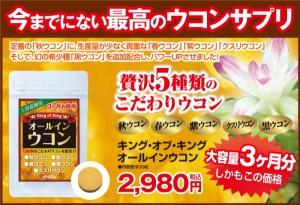 【キングオブキング オールインウコン 900粒】ウコン 錠剤、ウコン サプリメント、ウコン 粒、ウコン サプリ、黒ウコン、紫ウコン