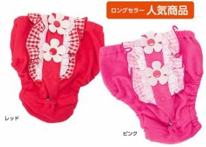 【きゃんナナ】 チェックフリルパンツ  5L