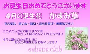 4月誕生花★メモリーアレンジ10,000円【送料無料】ネット特価!