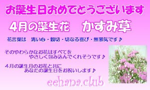 ポイント5倍!売れてます!4月誕生花★カラフルアレンジ5,000円【送料無料】ネット特価!