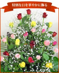 お祝花 ミックスのバラとかすみ草のアレンジ