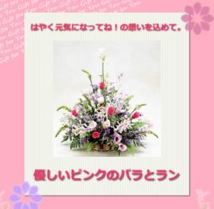 【お見舞いのお花】優しいピンクのバラとラン【誕生日】 【花】 【女性】