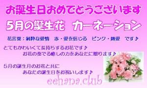 5月誕生花★オレンジアレンジ3,500円【送料無料】ネット特価!