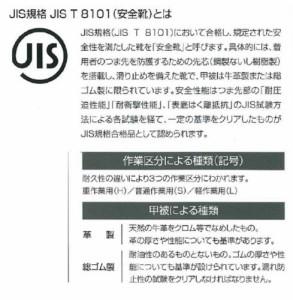 アイゼックスASシリーズ 【安全靴】 JIS規格 半長靴タイプ