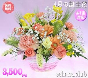 4月の誕生花★オレンジアレンジ3,500円【送料無料】ネット特価!